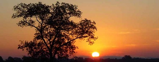 Sunrise_Le_Grand_Champ_LR-800x313