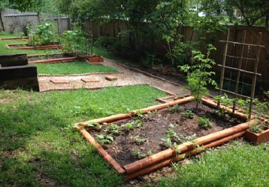 garden progress - 31