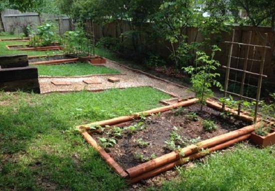 garden progress - 31